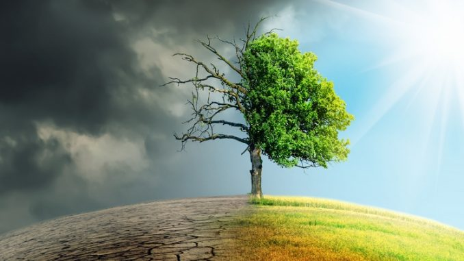 la lutte contre le changement climatique pourrait creer